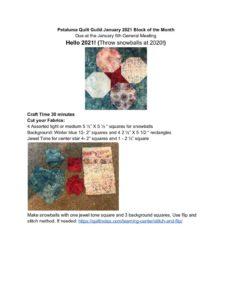thumbnail of PQG Jan 2021 Block of the Month Snowballs